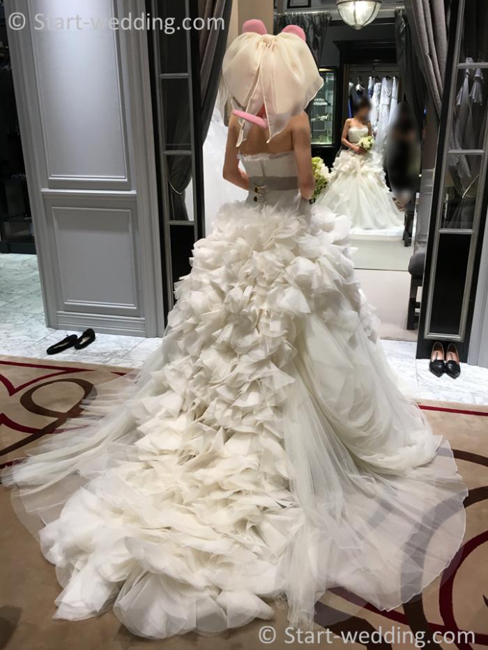 ヴェラウォンのドレス ヘイリー
