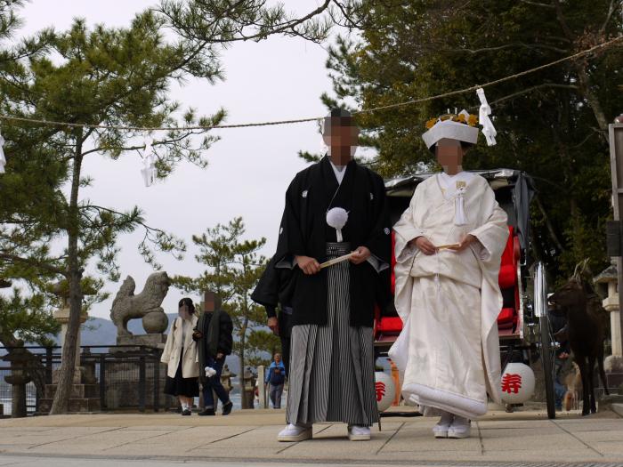 前撮り 厳島神社